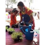 serviço de oficina de jardinagem Água Funda